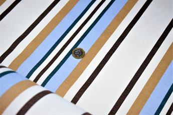 Stripe Print Canvas
