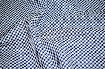 Small Gingham  Print