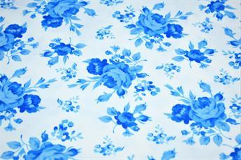 White & Blue Flower