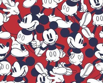 Little Johnny - Disney Happy Mickey Mouse