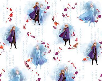 Little Johnny - Disney Frozen Anna & Elsa Digital Cotton