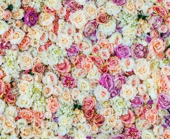 Little Johnny - Pastel Roses Cotton