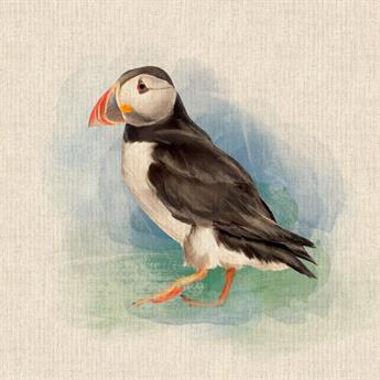 Puffin Panel