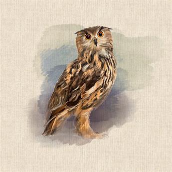 Owl Panel