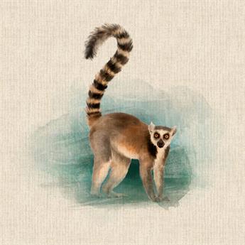 Lemur Panel