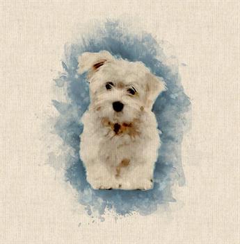 Bolognese Dog Panels