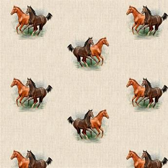 Horses All Over