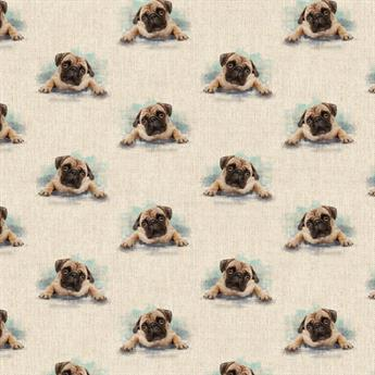 Pugs All Over