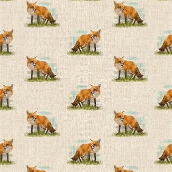 Fox All Over